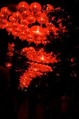 Chengdu Lantern Festival 2008