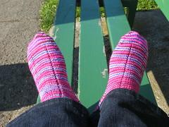 Socks_2009_01_12_Rockstar2