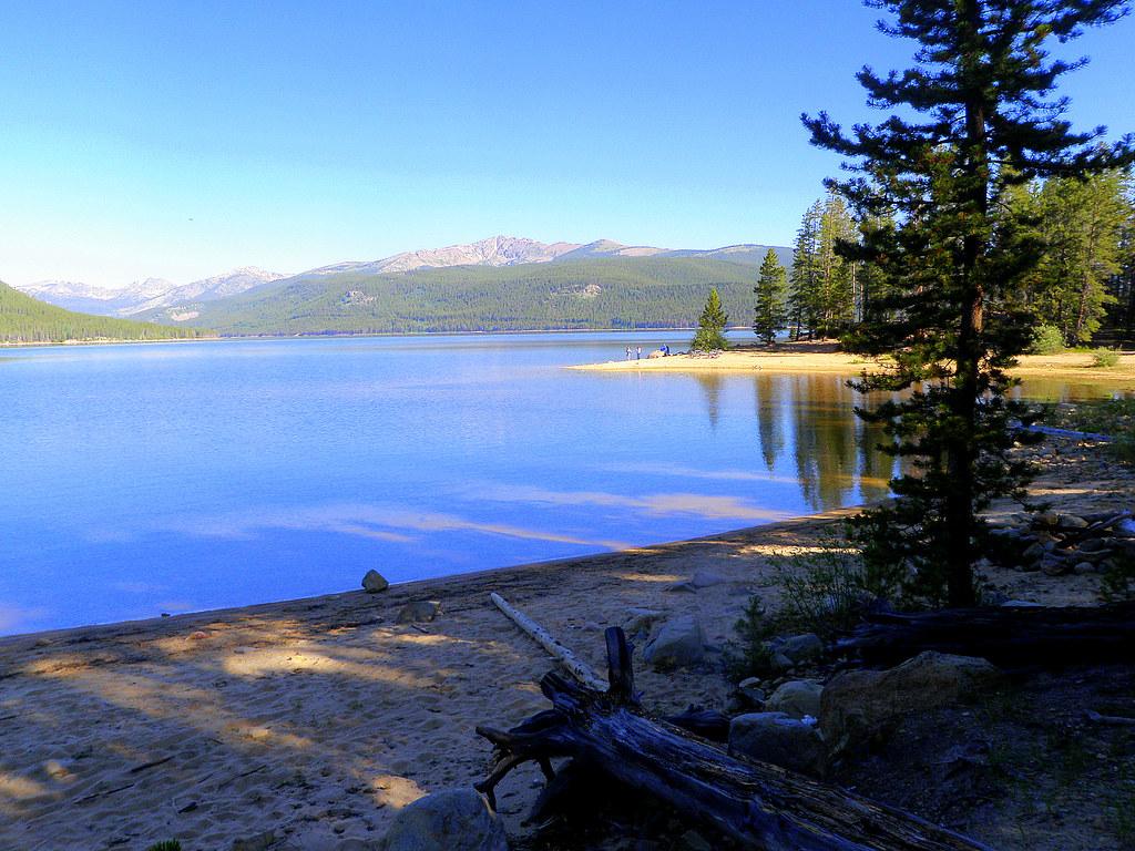 The shoreline of Turquoise Lake.  Beautiful place.