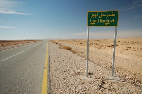 Camel Racetrack in the Syrian desert