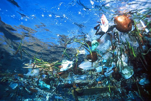 the Pacific ocean garbage patch