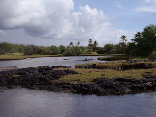 PONDS AT HONU`APO