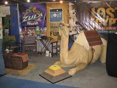 Camel at ASTC