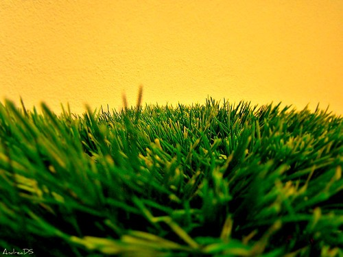 Artificial turf: green or toxic