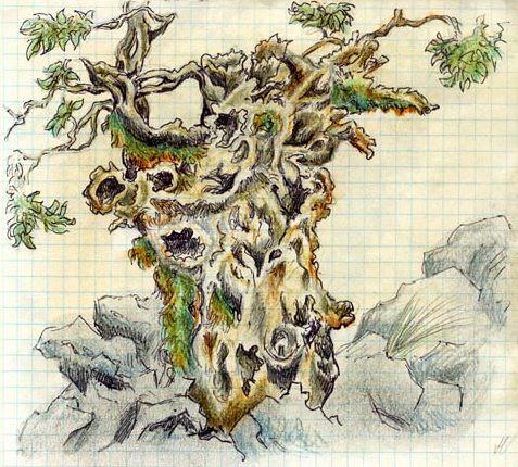 arborescenza