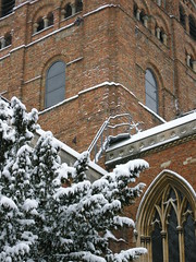st_albans_winter_166