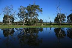 Lake View 03