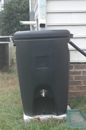 My Rain Barrel