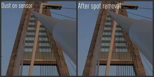 Spot removal with software