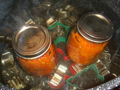 The jars in their bath. Note the cookie cutters I used in lieu of a canning rack in the bottom of the pan.