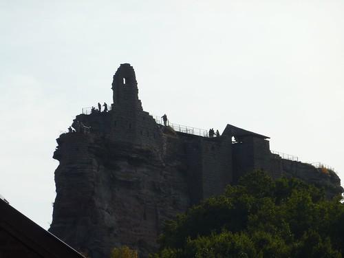 fleckenstein