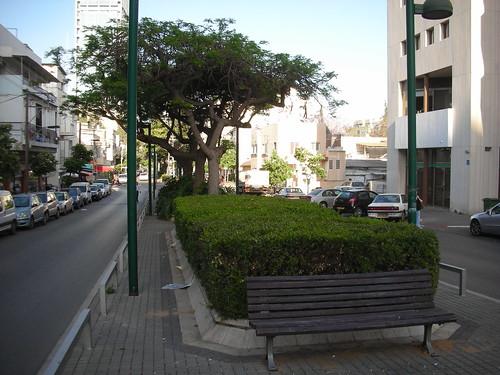 מסלול מכשולים בשדרות יהודית