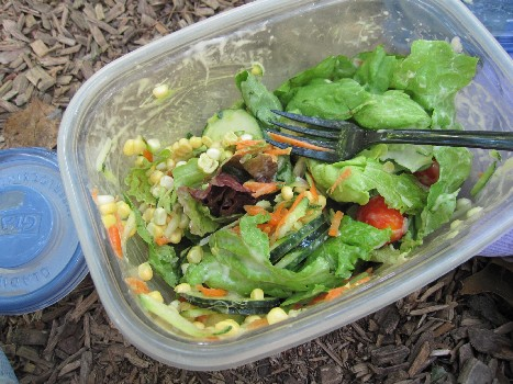 salad_lunch