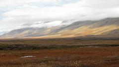 Svalbard, tundra landscape