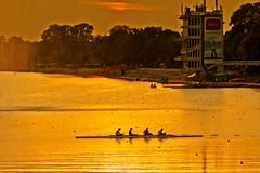 Belgrade Sea