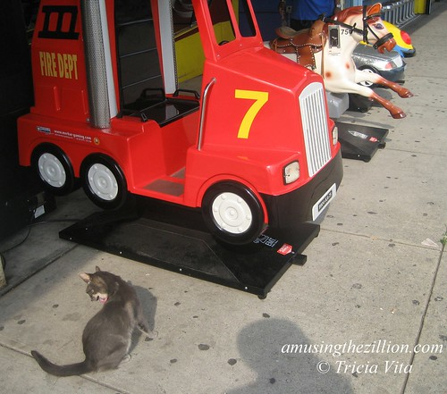 Target the Coney Island Arcade Cat on Patrol. Photo © Tricia Vita/me-myself-i via flickr