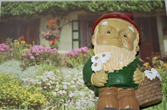 Gnome in front of his house