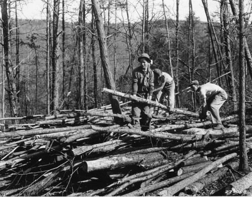 Piling up poles, Camp Roosevelt, George Washington National Forest, Virginia