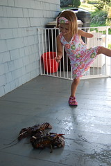 Maine Day 6 - Lobstah Dance