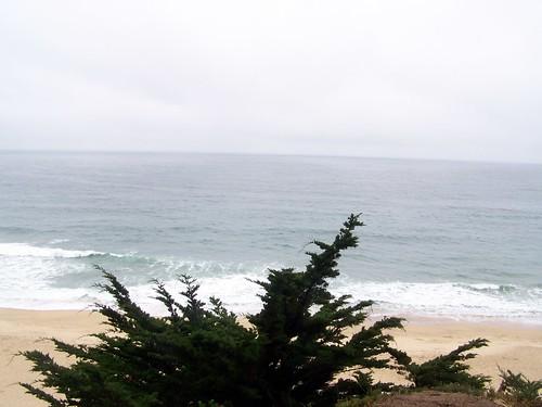 Pacifica coast (4)