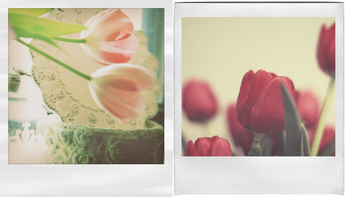 {spring love} (by Leaca's Philosophy)