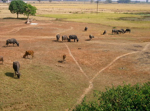 De Jagdalpur a Visakhapatnam