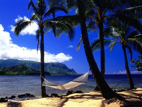 Afternoon Nap, Kauai, Hawaii