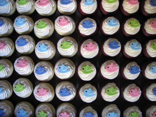 Rows of cupcakes with the Twitter bird logo on top
