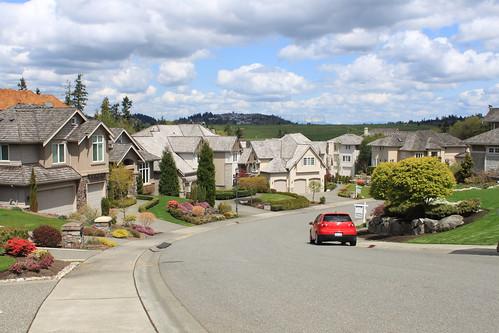 Cougar Mountain - Cross Town Trail - Terrace View (Far)