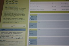 Care Plan worksheet