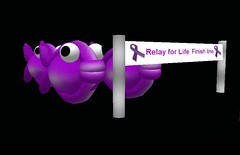 Relay for Life fishies