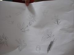HE Drawing Music 011