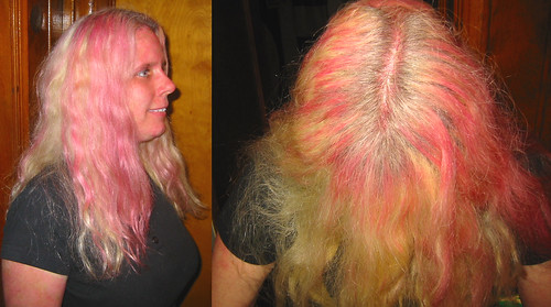 20081214 - after the Gwar concert - 173-7335-diptych-173-7336 - Carolyn - pinked hair - please click through to leave a comment on FlickR
