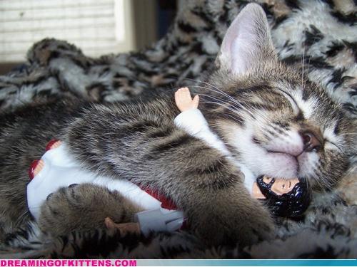 kitten hugging plastic jesus in its sleep