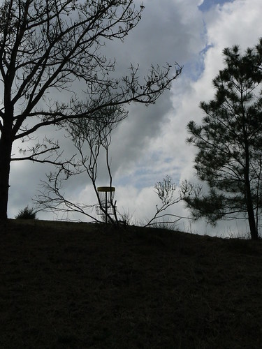 Fun Junktion Frisbee Golf Course -  Silhouettes From Below