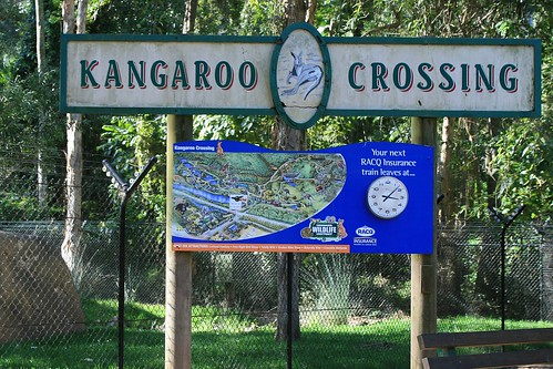 Sign: Kangaroo Crossing