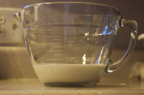 1 1/2 cups starter