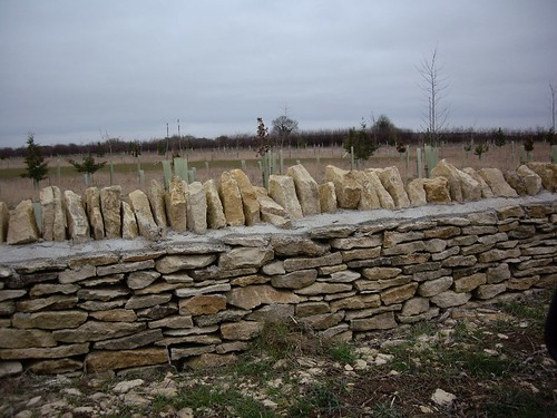 LIMESTONE FENCES