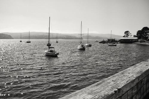 Marshall Harbor