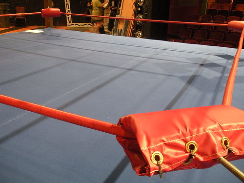 Our turnbuckles now have pads, and our ring mat now has a cover.