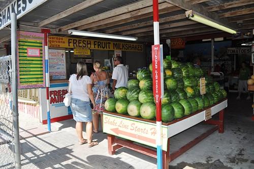 Milkshake Line at Robert Is Here Fruit Stand, Florida City, Fla.