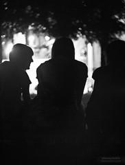 IMG_7813_Dark_Evenings