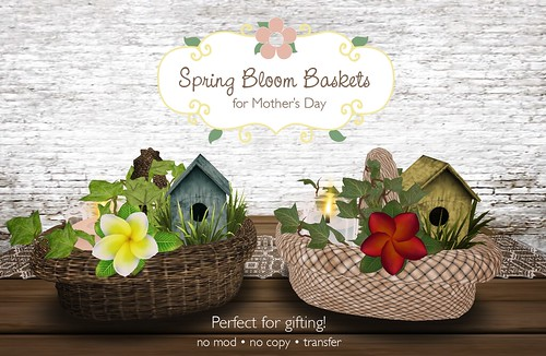 Spring Bloom Baskets for Mother's Day