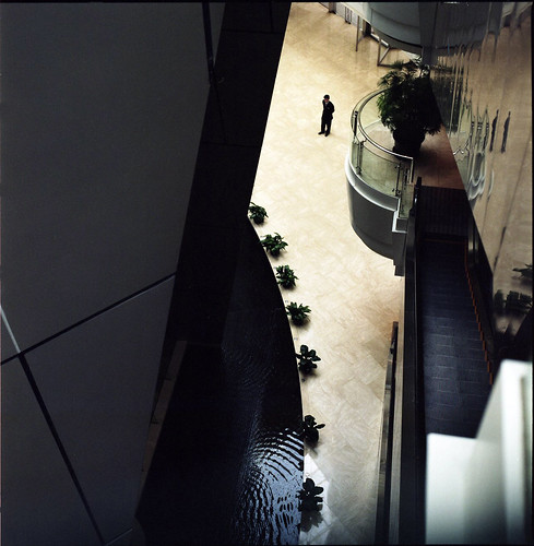 tim LC 拍攝的 bio building。