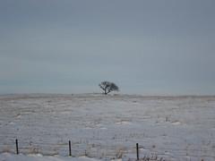 Saskatchewan - 2007 (3)