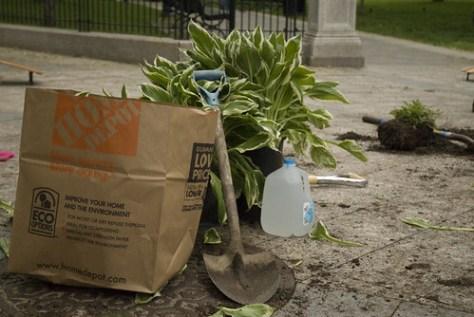 Turtle Boy Urban Gardening Crew