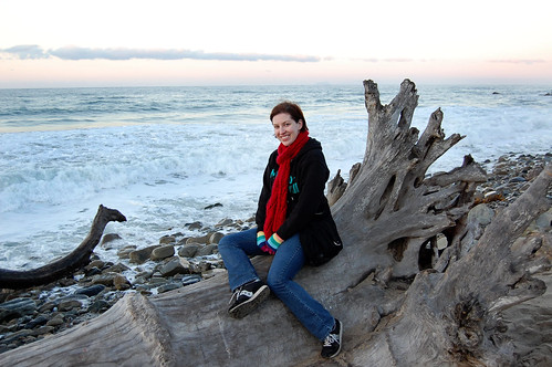 sitting on driftwood
