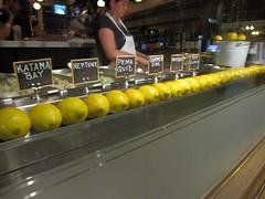 neptune oyster - lemons, lemons and more lemons