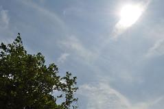 Sun over Charlotte Square