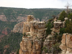 Point Imperial, North Rim, Grand Canyon Nation...